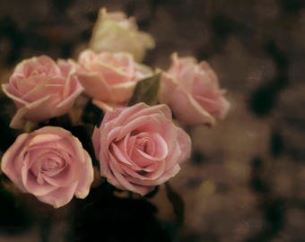 Photograph of a bouquet pink roses dusty rose print watercolor photography shabby chic romantic nature print wall art fine art photograph