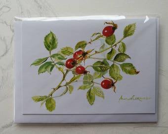 Cornish Greetings Card Watercolour Print - 6 x 4 (15 x 10 cm) - Autumn Rosehips