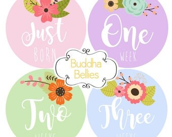 FREE NEWBORN SET Baby Girl Month Stickers Monthly Baby Stickers Milestone Baby Month Stickers Baby Girl Vintage Floral Baby Shower Gift