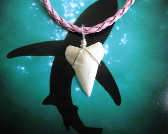 """Shark Tooth Necklace, Modern Day White Shark tooth, Silver plated wire, """"Pink"""" Braided Leather cord"""