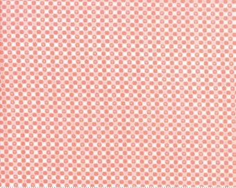 Bloomsbury Floral Gingham Soft Coral 47518 17 by  Franny Jane for Moda