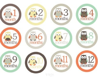 Month Stickers Baby Monthly Stickers Owls Baby Milestone Stickers Boy Stickers Monthly Baby Stickers Boy Month Stickers Boy Monthly Stickers