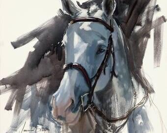 Gray Horse Portrait Giclée Fine Art Print