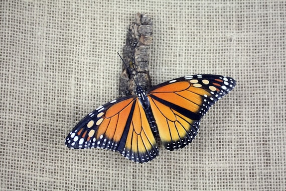 Monarch Butterfly Hand Carved Wood Carving by Mike Berlin