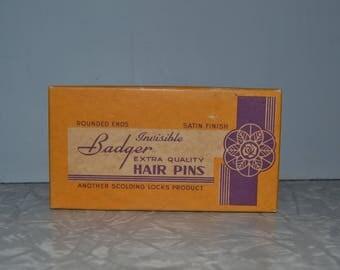 Badger Hair Pins ~ Vintage Bobby Pins ~ Vintage Beauty Supply ~ Pinup Hair ~ Original Box ~ Salon Decor ~ Epsteam