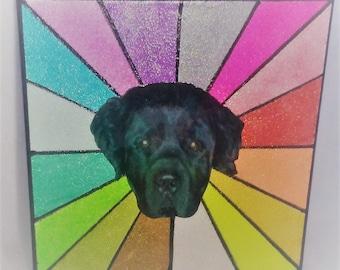 Custom Glitter Pet Art