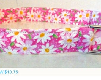 "Sale - 50% Off Pink & White Shasta Daisy Dog Collar -""Shasta""- Free Colored Buckles"