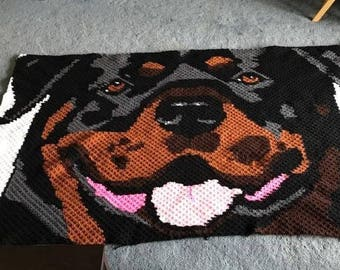 ROTTWEILER C2C graph and pattern. row by row instructions