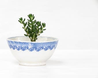 Antique Staffordshire Ironstone English Bowl Old White and Blue English Bowl  Old English Pottery Bowl White and Bluse Transfer Ware Bowl