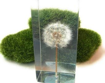 Dandelion Art Sculpture (Dandelion Paperweight) - Made from a Real Dandelion!