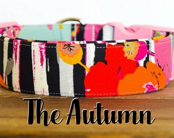 """Modern Colorful Girly Stripe & Floral Dog Collar """"The Autumn"""""""