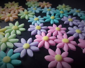 50 Pastel Daisies, edible fondant cake and cupcake toppers