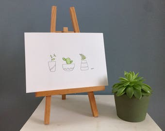 Three Small Potted Plants - Watercolour
