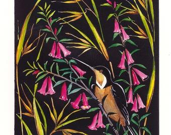 Nectar - Pink Heath