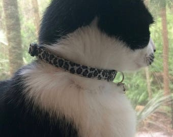 Fancy and Fierce Leopard Print Toy Dog and Cat Collars