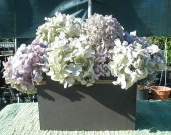 Dried hydrangea flowers- A dozen in lavender and green for spring/Easter- Shabby chic decor-Amethyst flowers