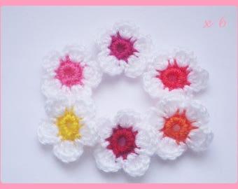 Set of 6 flowers applique crochet woolen 3.5 cm
