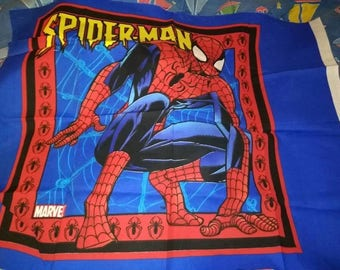 Spiderman pillow Panel