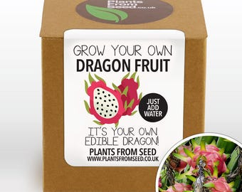 Grow Your Own Dragon Fruit Plant Kit