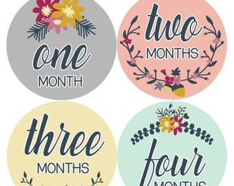 Baby Monthly Stickers, Baby Girl Monthly Stickers, Milestone Stickers, Baby Girl Month Sticker - Baby Girl, Girl, Baby Shower Gift 1113