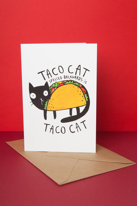 Taco Cat Greeting card Birthday card Mexican food