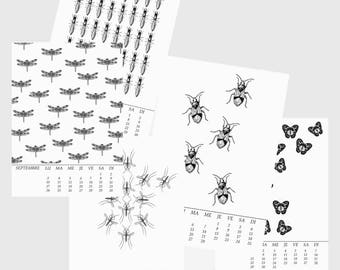 "Wall Calendar 2018 ""Insects"""