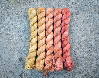 Hand Dyed Gradient Yarn Set - 100% Merino SW Fingering Weight Yarn - Single ply - 100 grams - 366m/400yards - Autunno - NEW!!