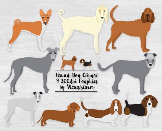 Hound Dog Clipart Hunting Dog Breeds Bloodhound Basset (570 x 461 Pixel)