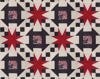 Quilt Blocks Of Valor, Quilt Blocks for Valor Quilts, 54-40 or Flight-Churn Dash Combo