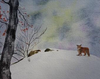 Animal watercolor: no Lynx in the snow