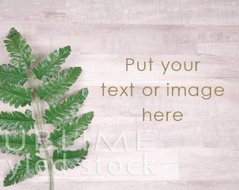 Styled Stock Photography / Styled Desk / Digital Background / Wood Background / Greenery / Stock Photo / Image Background / StockStyle-849