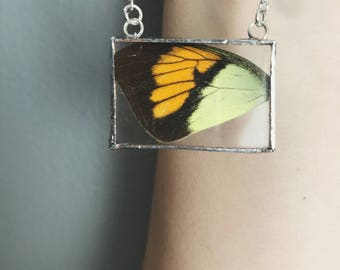 Real Butterfly Wings, Butterfly Necklace, Butterfly Jewelry, Real Butterfly Jewelry, Real Butterflies, Buttefly Wing Jewelry, Bug Jewelry