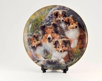 Vintage,Danbury Mint,Shetland,Sheepdog,Sheltie,Family Time,Plate,SIMON MENDEZ, Limited Edition,Plate # C945,Collectible Plate,Wall Decor
