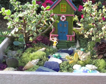 DIY Complete Beach Enchanted Fairy Garden kit