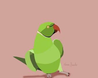 Ringneck Parakeet Prints
