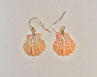 Wire Wrapped Sunrise Shell Earrings 14k Gold Filled; Seashell; Boho