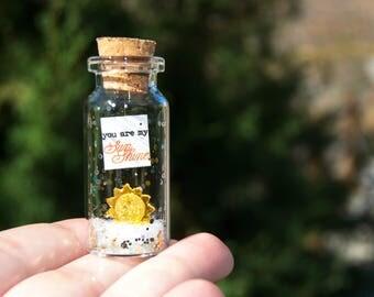You are my SunShine. Te quiero. Mensaje en una botella. Miniaturas. Regalo personalizado. Divertida postal de amor.