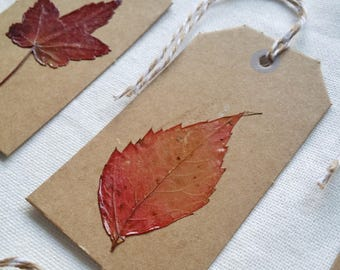 "Set of 8 tags with real leaves-collection: ""messages from the Woods"""