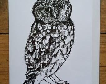 LITTLE OWL greetings card // digitally printed from an original artwork // A5