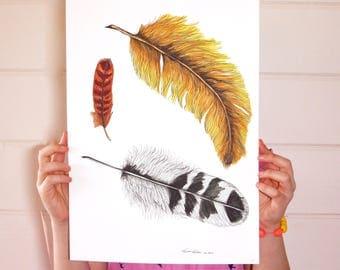 Feathers Print / Feather Poster / Nursery Print / Kids Wall Art / Feather Illustration / A4 A3 / Birds / Feathers / Bird Illustration