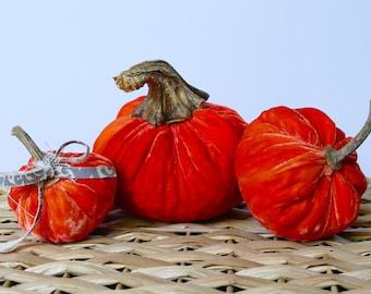 Set of 3 Orange Plush Velvet Pumpkins