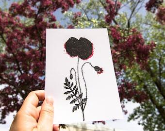 Poster - flower - poppy - 5 x 7