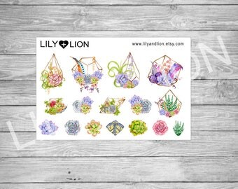 SUCCULENTS & terrariums - planner stickers - boho - watercolour - watercolor - plum paper planner - erin condren -  bujo - happy planner