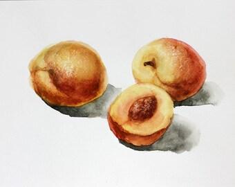 Peach watercolor, Peaches watercolor, Peach Watercolor painting, Original watercolor art, Peaches watercolour art, Fruit Art, Kitchen art
