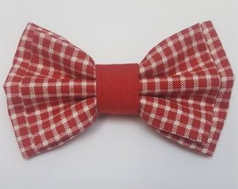 Charlie Dog Bow Tie