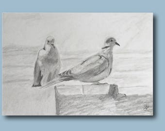 Drawing of a courtship of a couple of doves