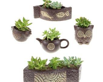 Set of 5 Brown Ceramic Planter Pots - Succulent Pot, Owl Planter, Succulent Planter, Succulent with Pot, Owl Gifts, Ceramic Pot, Owl Pot