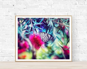Bright Butterfly Print |  Butterfly Printable Art |  Instant Download |  Butterfly Photography | Butterfly Art