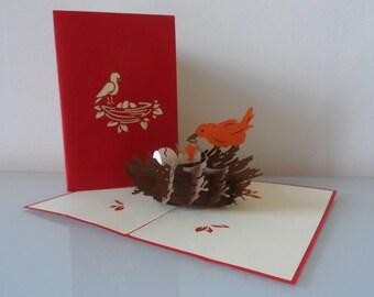 Birds Nest Pop up Card