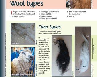 Deborah Robson's Guide to Fiber: Wool Types